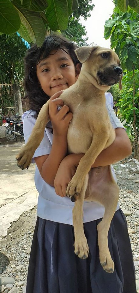 Anti-Rabies Drive Goes to Brgy. Bongato West and East