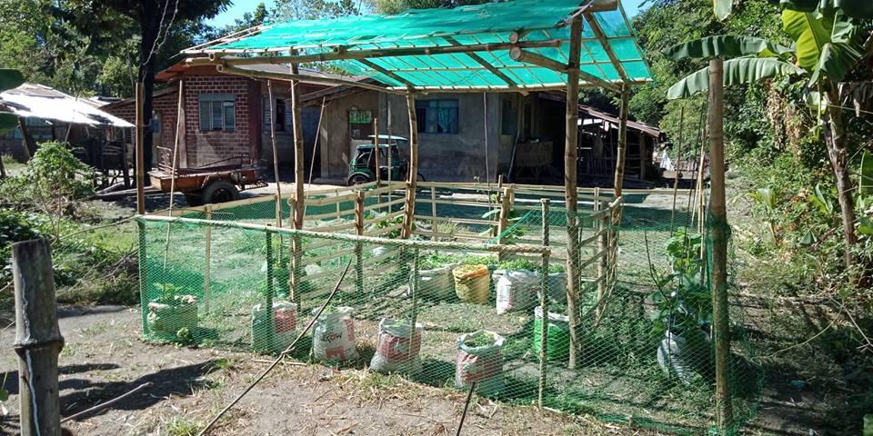 Community Garden at Nursery sa Bawat Barangay
