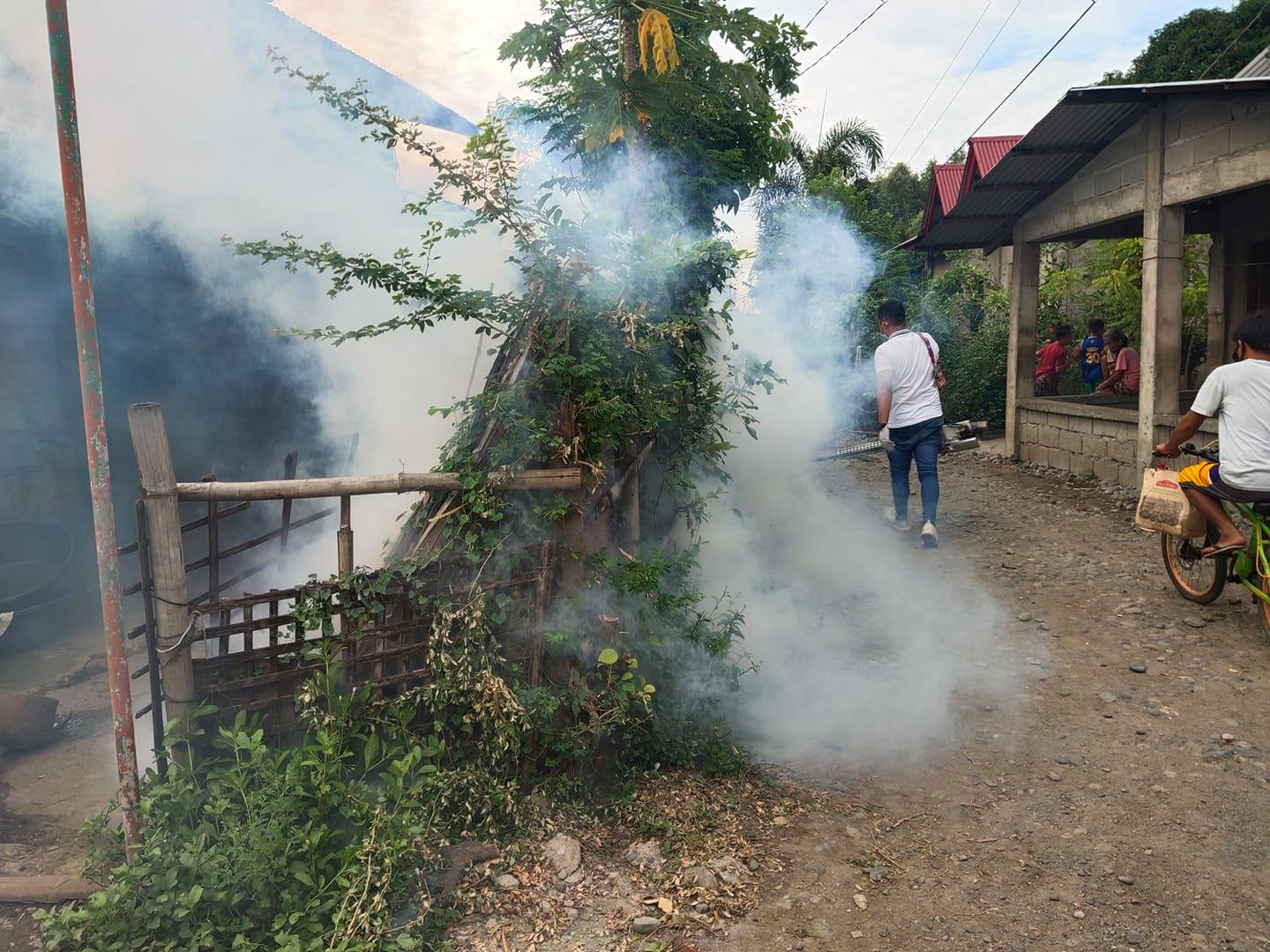 Anti-Dengue Intervention at Tococ East