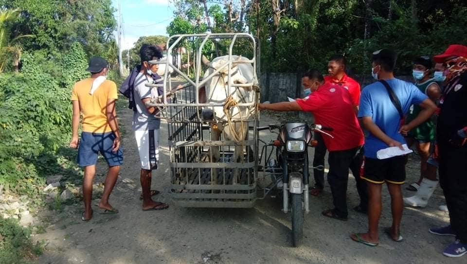 Municipal Slaughterhouse, Naghigpit para sa Kaligtasan ng mga Bayambangueño