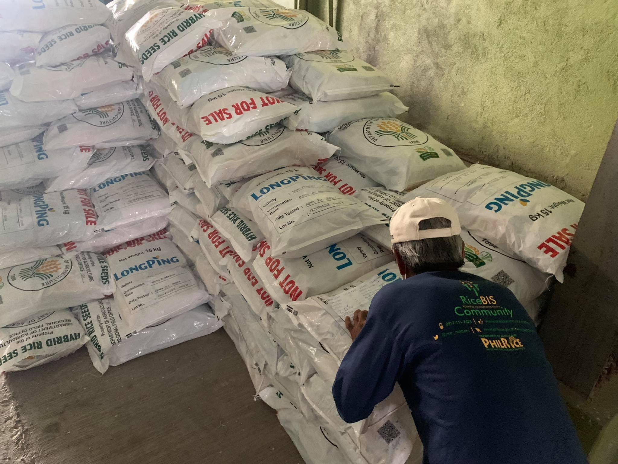 DA Rice Seed Allocation, Nag-umpisa nang Ipamahagi